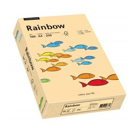 Carton A4 160g/mp 250 coli/top salmon, RAINBOW