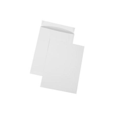 Plic B4 alb siliconic 250x353mm tip T